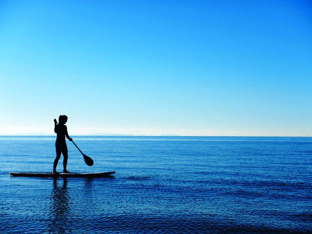 sup surfing wallpaper -#main