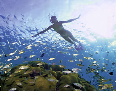 Phuket leisure activities - snorkeling