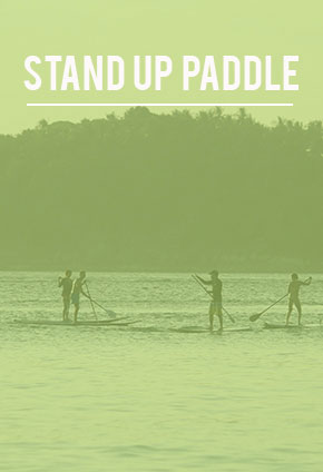 Stand-Up-Paddle in Phuket