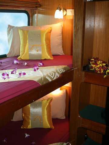 Andaman Tritan Cabine Standard
