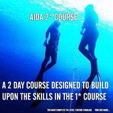 AIDA Courses 2 stars