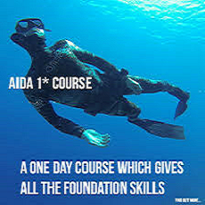AIDA Courses 1 star modified