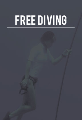 freediving in Phuket