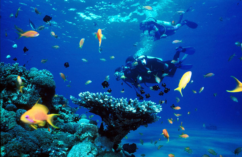 What to do in Phuket scuba diving