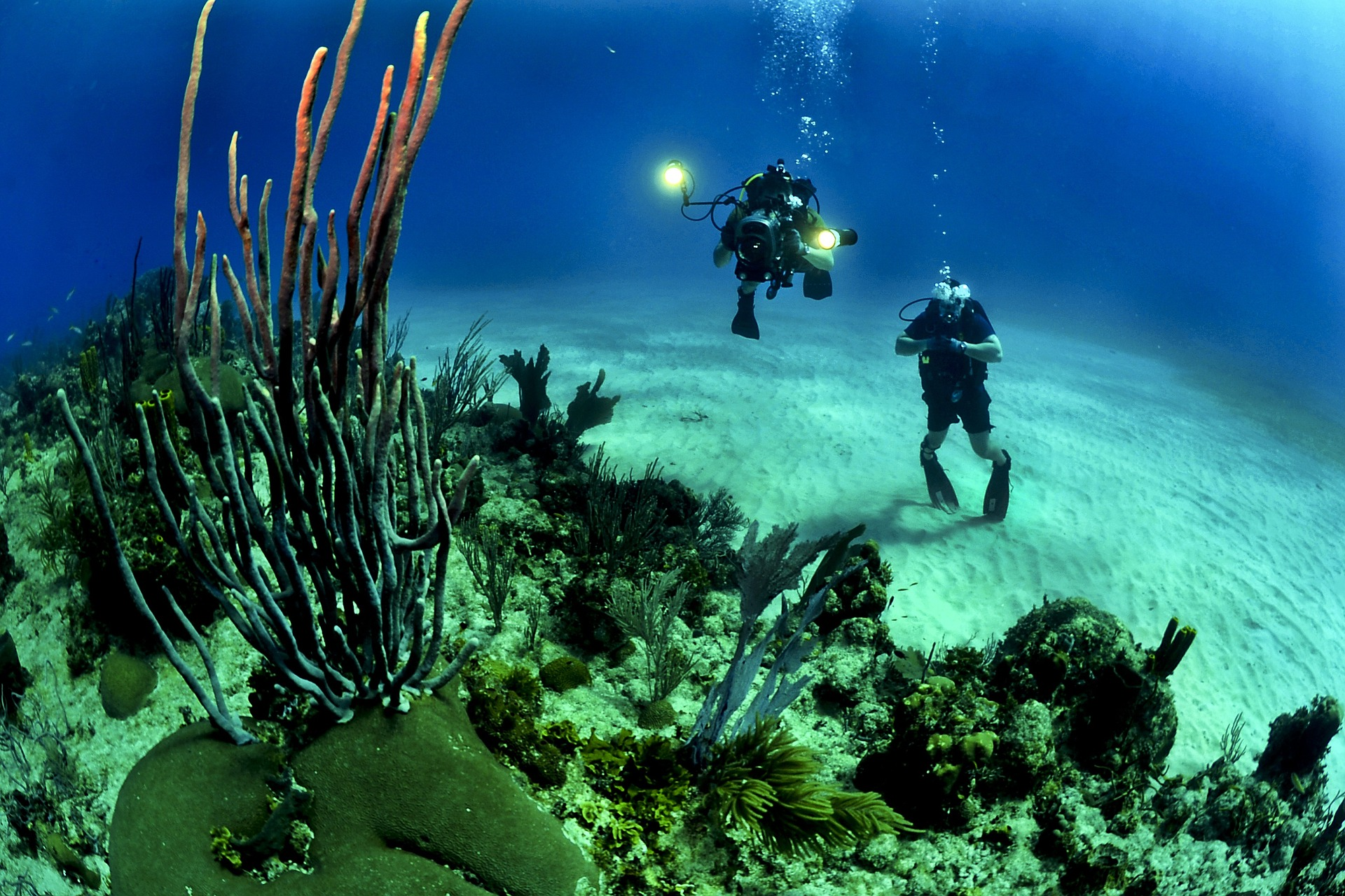 Phuket leisure activities - discover scuba diving