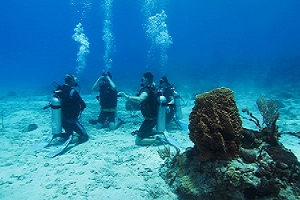 plongée sous marine Phuket Open water