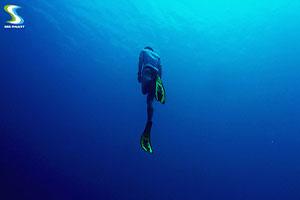 free diving in Phuket 3