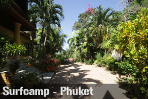 surfing in Phuket, surf camp