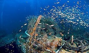 phuket scuba diving king-cruiser
