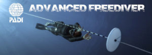 freediving thailand padi advanced freediver phuket