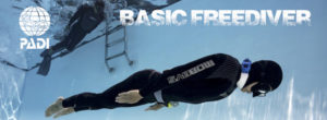 Freediving thailand PADI Basic Freediver