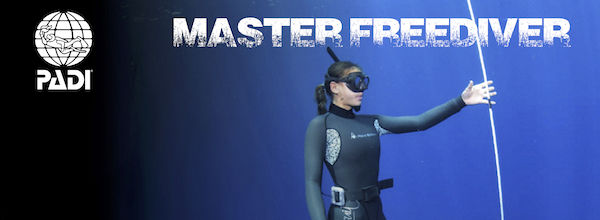 padi freediving courses phuket