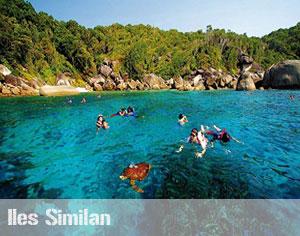 padi open water phuket
