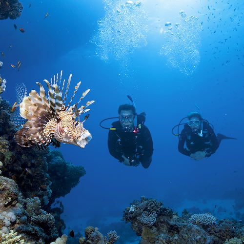 Phuket best dive center scuba diving phuket sssphuket
