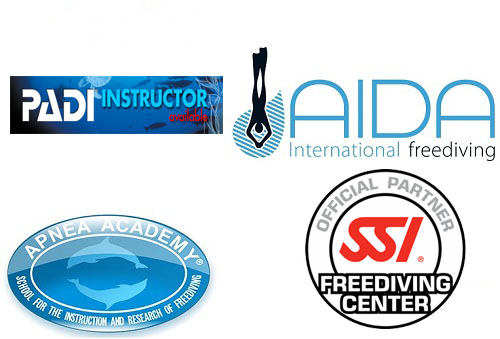freediving partners phuket