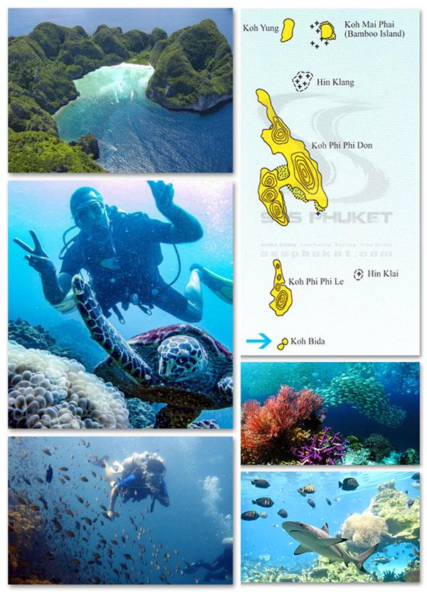 snorkeling à phi phi