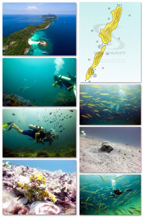 Racha Noi Diving Phuket