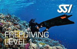 freediving thailand SSI level 1 freediving Phuket